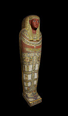 00957116001