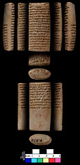 00943431001
