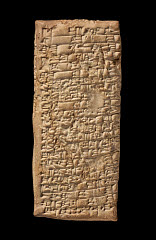 01613004116