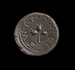 01334637001