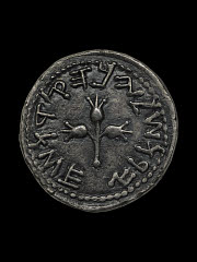 01612942849