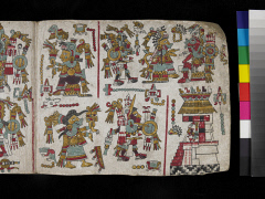 00050856001