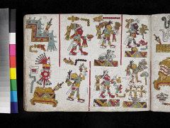 00050876001