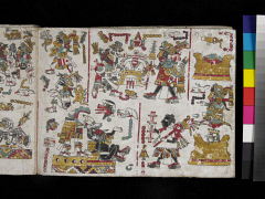 00050884001
