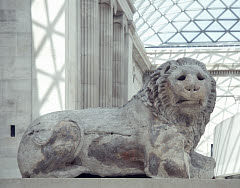 00318080001