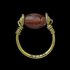 01608931001