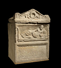 01613195028