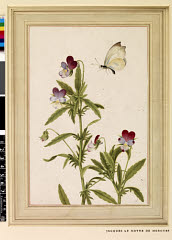 00844602001