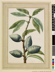 00844618001