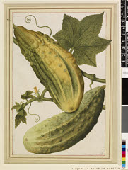 00844619001