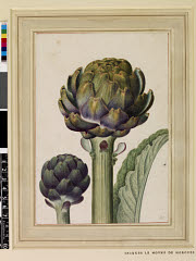 00844732001