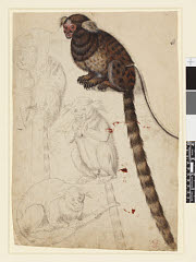 00999879001