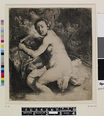 00462393001
