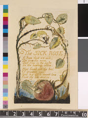 00038807001