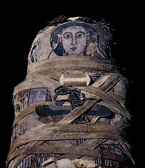 00271643001