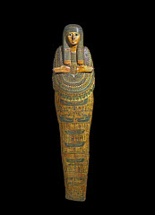 01142955001