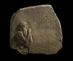 00878700001